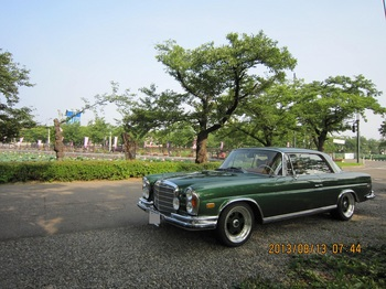 4、高田公園にて.JPG